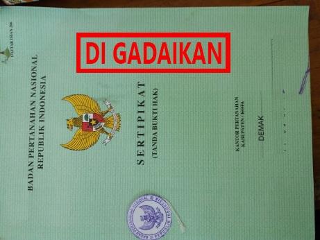 sertifikat rumah di gadaikan